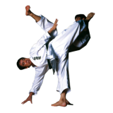 karate---shotokan.png